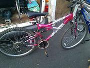 Rhino Y Frame Bike 20